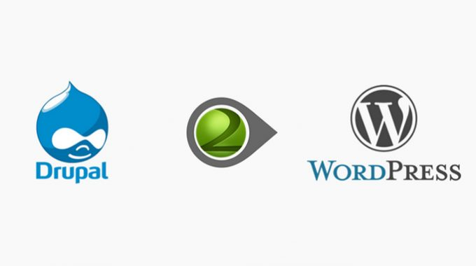 Drupal to WordPress Migration: How to Get the Best Result